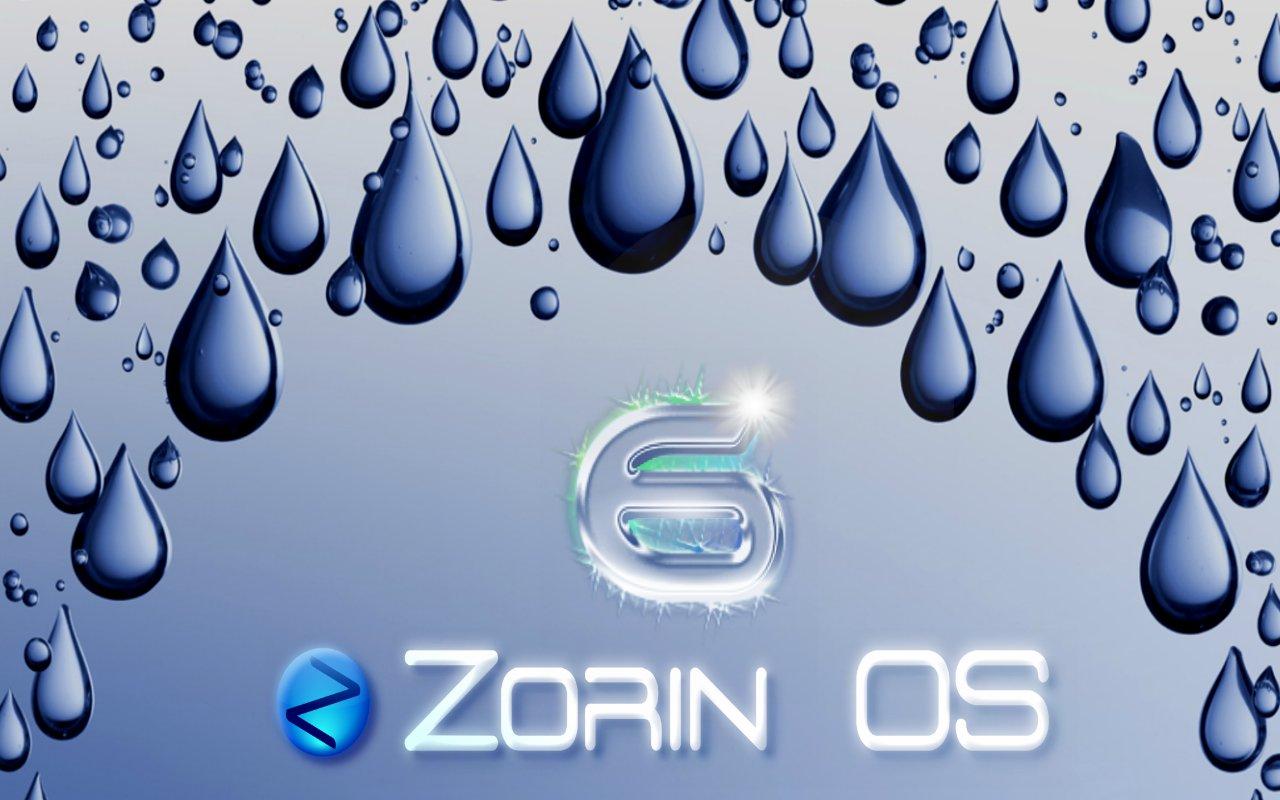 ZO -6.jpg